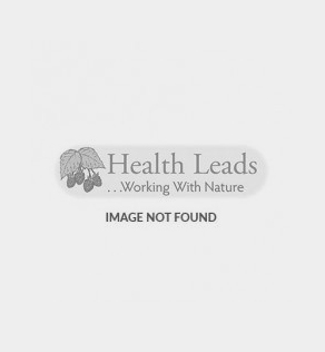 Folate (L-Methylfolate) and Vitamin B12 Food Supplements
