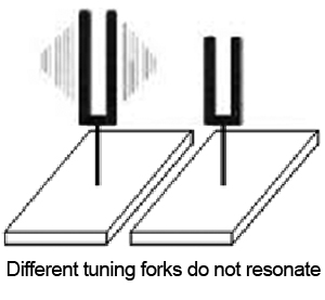 Different tuning forks do not resonate
