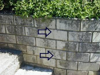 Crack in garden wall